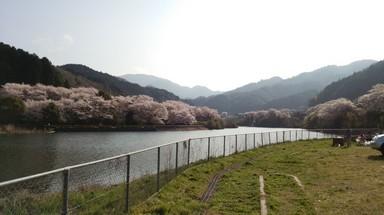 龍岡キャンプ場.JPG