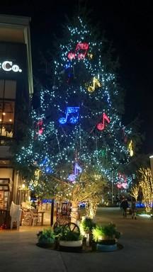 クリスマスツリー今治.jpg